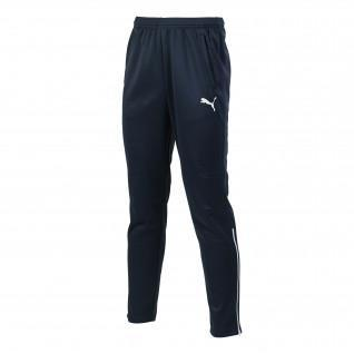 Pantalones de entrenamiento Puma Entry