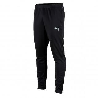 Pantalones de entrenamiento Puma Teamrise poly