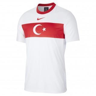 Camiseta de aficionado Turquie 2020
