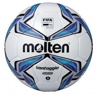 Bola Molten FV4800 Tamaño 5